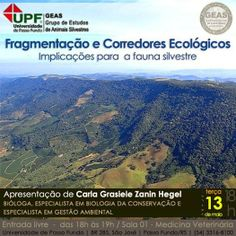 Grupo Ecológico Sentinela dos Pampas: Fragmentação e Corredores Ecológicos, você sabe o ...
