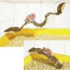 Karlie hamster ladder, ladder, climbing frame for small animals Wonderland, Gerbil, Hamsters, Ladder, Climbing, Bro, Frame, Small Animals, Pets