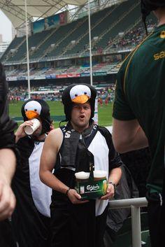hong kong sevens 2011 penguins