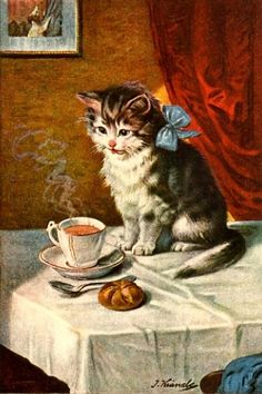 "kitten with tea......YOU SAY IT NEEDS CREAM??.....O.K. ""BOOTSIE"", LET ME GO OUT MILK ""BOSSIE"" A FEW JERKS......BE BACK IN A SECOND......""BOOTSIE IS SO PARTICULAR, JUST LIKE HER FATHER , ""OVERSHOE"".........ccp"