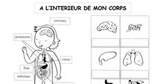 intérieur corps.pdf French Resources, Science, Comics, Gaming, Comic Book, Comic Books, Early French, Science Comics, Comic