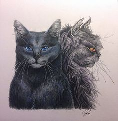 BlueStar and YellowFang NOT mine