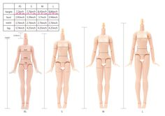 OFFICIAL Azone Neemo Flection New Sizing Information -Direct from Azone