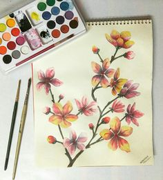 Blossomed flowers