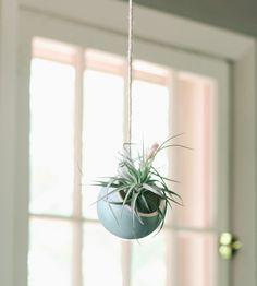 Ceramic Hanging Plan
