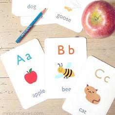 Englische Flashcards