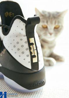 26d451f9048 Nike LeBron 14  BHM  White Metallic Gold-Black