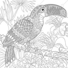 Stock Vector Of Stylized Toucan Bird Sitting On Palm Tree Branch Among Hibiscus Flowers Freehand Sketch For Adult Anti Stress Coloring Book Page With