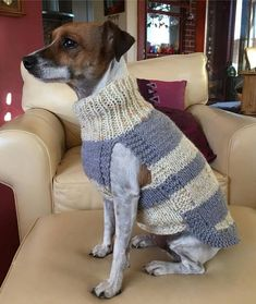 Made to order Dog Jumper, Dog Sweater, hand knitted in UK, with or without harness hole and optional pocket Yorkie, Waterproof Dog Coats, Dog Jumpers, How To Start Knitting, Dog Sweaters, Whippet, Dog Toys, Custom Made, Hand Knitting