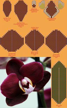 Схема бисероплетения - цветок орхидеи фотография