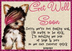 Cheer anyone up feeling blue when unwell with this cute card. Free online Cute Puppy Get Well Card ecards on Everyday Cards Get Well Soon Funny, Get Well Soon Quotes, Morning Hugs, Morning Wish, Get Well Wishes, Wishes For You, Quotes For Him, Life Quotes, Healing Wish