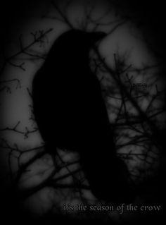 †Goth Dolly©†