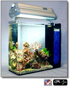 PICO 3gal. Display Tank System by CPR Aquatics http://www.aquacave.com/PICO-3gal-Display-Tank-System-by-CPR-Aquatics-P1364.aspx