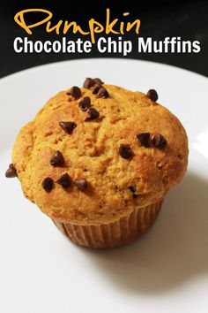 Pumpkin Chocolate Chip Muffins | Good Cheap Eats http://goodcheapeats.com/2011/08/pumpkin-chocolate-chip-muffins-the-great-pumpkin-shortage-of-2011/  These Pumpkin Chocolate Chip Muffins are a cinch to prepare. Full of pumpkin, spice, and chocolate, they are perfect for fall breakfasts and snacks.