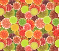 Got Citrus Fruits? fabric by bonnie_phantasm on Spoonflower - custom fabric
