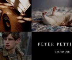 Peter Pettigrew Peter Pettigrew, Marauders Era, Find Image, We Heart It, Harry Potter, Board, Movie Posters, Film Poster, Billboard