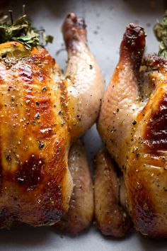 Sweet Citrus and Herb Bouquet-Stuffed Cornish Game Hens with Orange Marmalade Glaze // The Cozy Apron Cornish Hen Recipe, Cornish Game Hen, Cornish Hens, Gallus Gallus Domesticus, Cooking Recipes, Healthy Recipes, Cooking Ideas, Meat Recipes, Gourmet