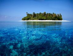35 places to swim in the world's clearest water I want to travel to nearly every place on this list. Absolutely beautiful.