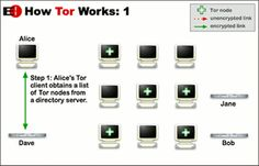How to Use Tor Browser for Anonymous Web Browsing: Using Tor to Browse the Web Anonymously
