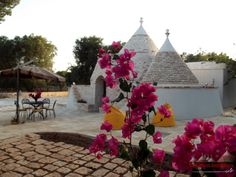 Trulli Chef Marco for Rent http://www.apuliarentals.com/english/trulli-for-rent-in-puglia/trulli-chef-marco-ostuni/