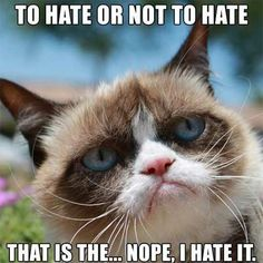 Grumpy Cat Meme deutsch