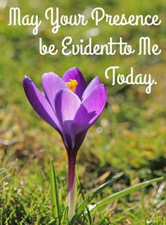 My Redeemer Lives: Joy Comes in the Morning!