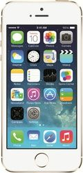 Apple iPhone 5S (32GB) - Gold -  Buy Apple mobile phones online at lowest prices. Compare latest mobile phones price list in India & buy best #AppleMobiles #ApplePhones #IphoneCellPhones #Iphone5s #Iphone6 #Iphone6Plus mobiles with deals, discounts & offers on https://youtellme.com/phones/mobile-phones/apple-iphone-5s-gold-with-32-gb-combined/