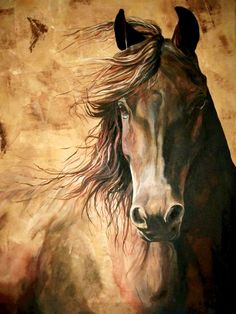 The willful horse I love horses