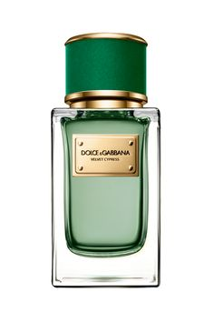 2017 Velvet Cypress Dolce&Gabbana perfume - a new fragrance for women and men 2017 Dolce & Gabbana, Dolce And Gabbana Fragrance, Perfume Diesel, Best Perfume, Perfume Bottles, Best Fragrance For Men, Best Fragrances, Perfume Collection, Body Spray