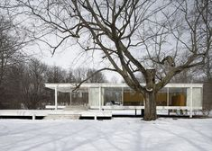 Mies van der Rohe's Farnsworth House.... Classic!