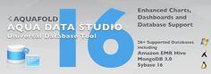 Aqua Data Studio 16.0.5.9