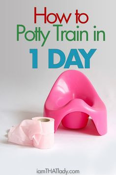 How to Potty Train in a Day