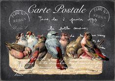Vintage Labels, Vintage Cards, Vintage Paper, Vintage Postcards, Vintage Diy, Vintage Pictures, Vintage Images, Collages D'images, Etiquette Vintage