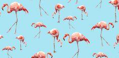 geometric pink flamingo