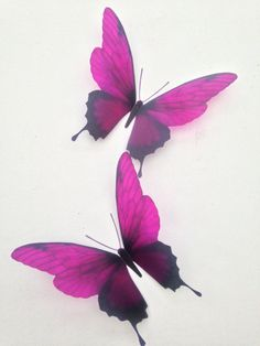 Fuschia Butterflies Beautiful 3D Fuschia in Flight Butterflies Amazing Colours !!! ******************************************************* Create A Perfect Visual focal Point On Your Wall Or Accessories measurments are app 4 @ 4.5 3D Removable Butterflies Fuschia These 3d