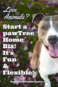 Do you love pets? Are you searching for a home business that combines your love of animals with the ability to earn some extra money from home? Check out pawTree! It's a fun and flexible work at home business! You set your own work from home schedule. Awesome home-based business opportunity for pet lovers!