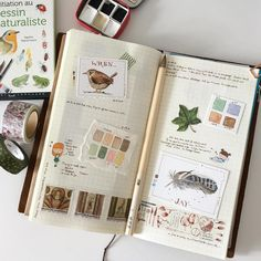Art journal page ideas- inspiration for art journaling Art Journal Pages, My Journal, Bullet Journal, Art Journals, Journal Layout, Filofax, Art Doodle, Scrapbooking Album, Nature Sketch