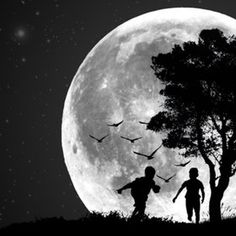 Giant bats in the moon light...chasing children.