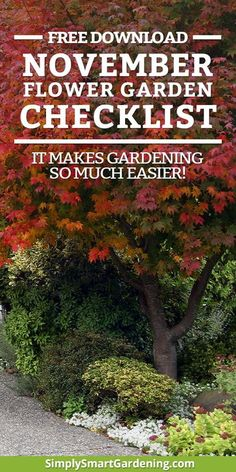 Discover what you need to do in your flower garden this November. Download my free flower garden printable checklist and you'll get a list of everything you need to do this month. Click to download the checklist: What to Do in Your Flower Garden This No