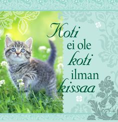 Keittiöpyyhe Koti ei ole... - Puuilo Cat Quotes, I Love Cats, Wise Words, Poems, Cute Animals, My Love, Pretty Animals, Poetry, Cutest Animals