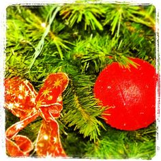 Merry Christmas!!  #iphotography, #bestagram, #instagram, #igerstreviso, #instagood, #instagramhub, #igers, #igdaily, #webstagram, #ignation, #photooftheday,  #instaandroid, #foto_italiane, #golosidifuturo #instaitalia  #skema_eu #floor #laminate - @skema_eu- #webstagram