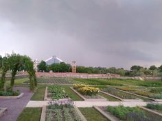 The garden before the storm at 21. June