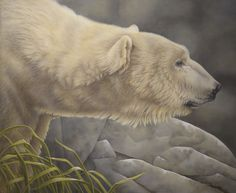 "Painting by Laura Regan. ""I named this polar bear ""Dodici"" because he was completed on the last day of December, the twelfth month, of 2012. (Dodici means twelve in Italian!)"" #art #oilpainting #animals #bear #wildlife #realism #nature #contemporaryart #polarbear"