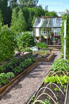 garden and greenhouse