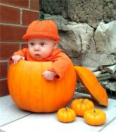 25 Babies In Pumpkins. (Seriously... do not leave me alone with your infant this fall. This will happen.)