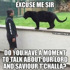 Excuse me, sir, do you have a moment to talk about our lord and savior T'Challa? Marvel Memes, Avengers Memes, Marvel Avengers, Marvel Dc Comics, Avenger Imagines, Avengers Quiz, Black Panther Comic, Black Jaguar, Geek Culture