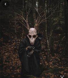 Mysterious Photography, Eerie Photography, Forest Photography, Creepy Masks, Creepy Art, Gothic Aesthetic, Witch Aesthetic, Wendigo Costume, Creepy Woods