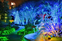 Garden & Landscaping, Amazing Atlanta Botanical Gardens Lighting Design With Colourful Light And Tree Lighting: Awesome Garden Lighting at Christmas Design Ideas