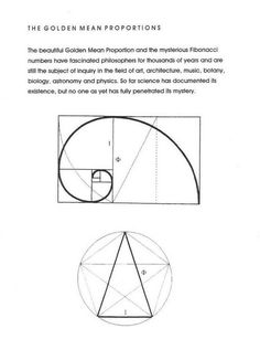 Golden ratio, Golden Mean and Golden Proportion. Fibonacci Golden Ratio, Fibonacci Spiral, The Golden Mean, Divine Proportion, How To Read Faster, Character Design References, Teaching Art, Sacred Geometry, Art Techniques