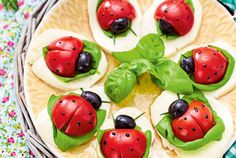Our popular recipe for tomato ladybug caprese and more than other free recipes on LECKER. Our popular recipe for tomato ladybug caprese and more than other free recipes on LECKER. Vegan Appetizers, Finger Food Appetizers, Appetizer Recipes, Cute Food, Good Food, Yummy Food, Food Art For Kids, Food Garnishes, Food Humor